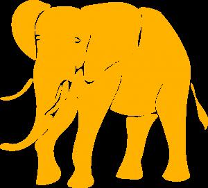 I WANT AN ELEPHANT elephant